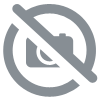 Chine - Teguanyin Green Oolong